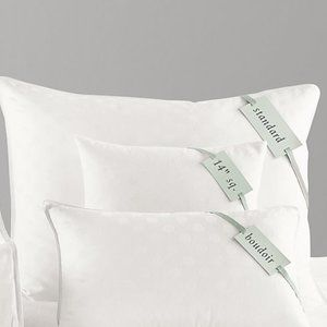 Restoration Hardware DownFree Toddler Pillow 12x18
